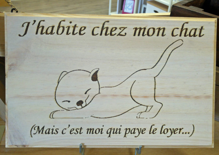 Tableau_chat_blanc